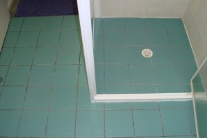 Bathroom before Grout Colour Seal