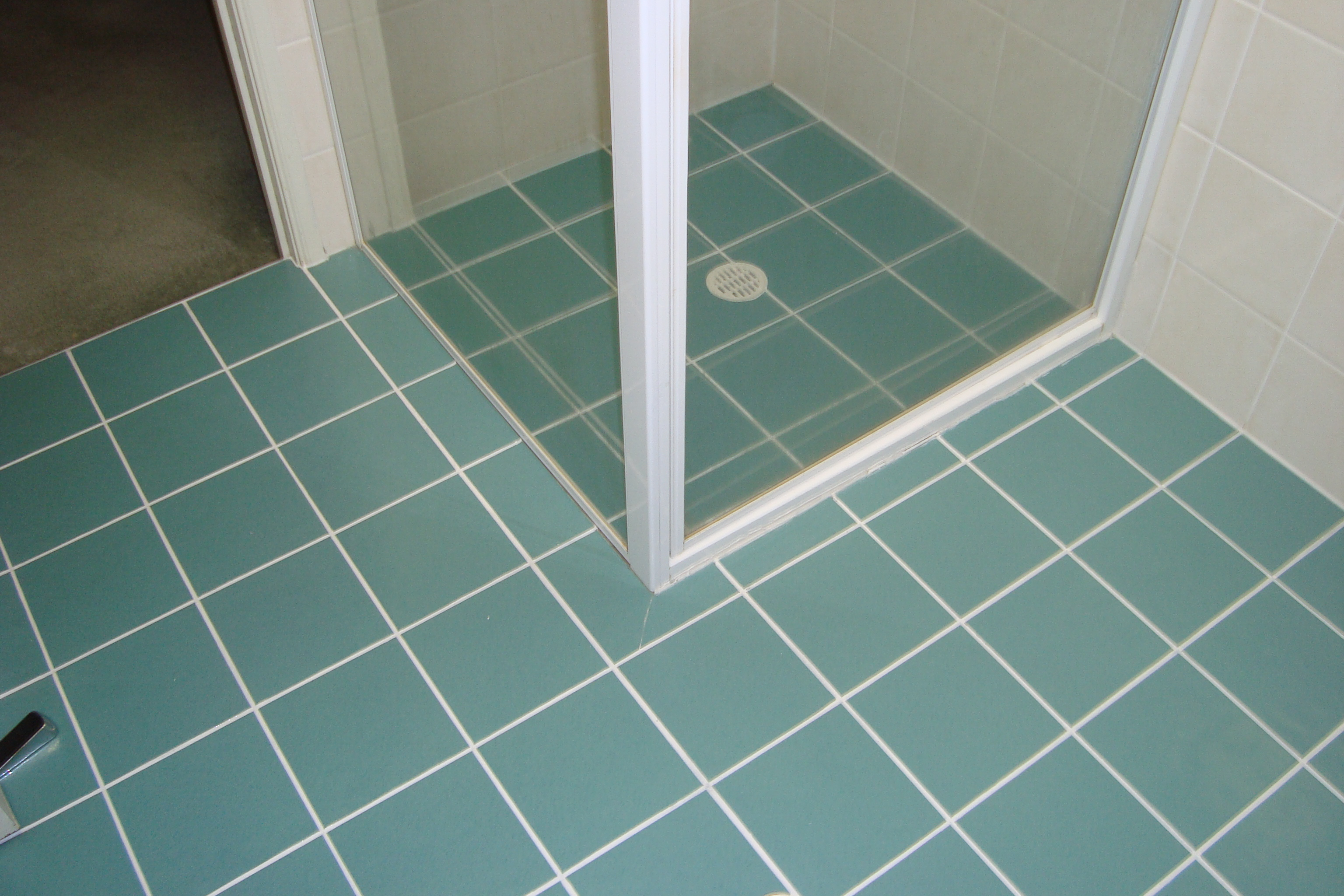 Bathroom After Grout Colour Seal Part 4
